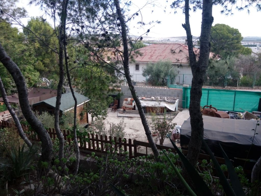SSG-p1946: Plot in Jacarilla